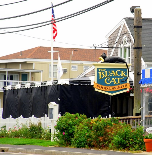 Black Cat in Hyannis, Massachusetts